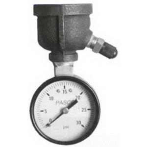 1414 PASCO 0-30# AIR TEST GAUGE 1INCH FEMALE INLET